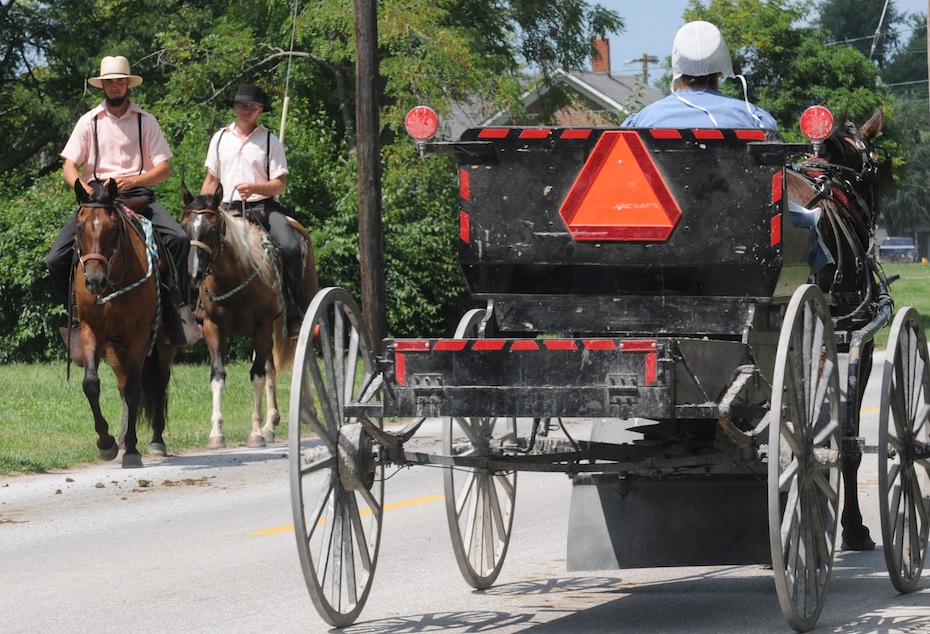 amish vs aussie The amish way of life and culture explained read about the plain people, their way of life funerals, weddings, schools, traditions.