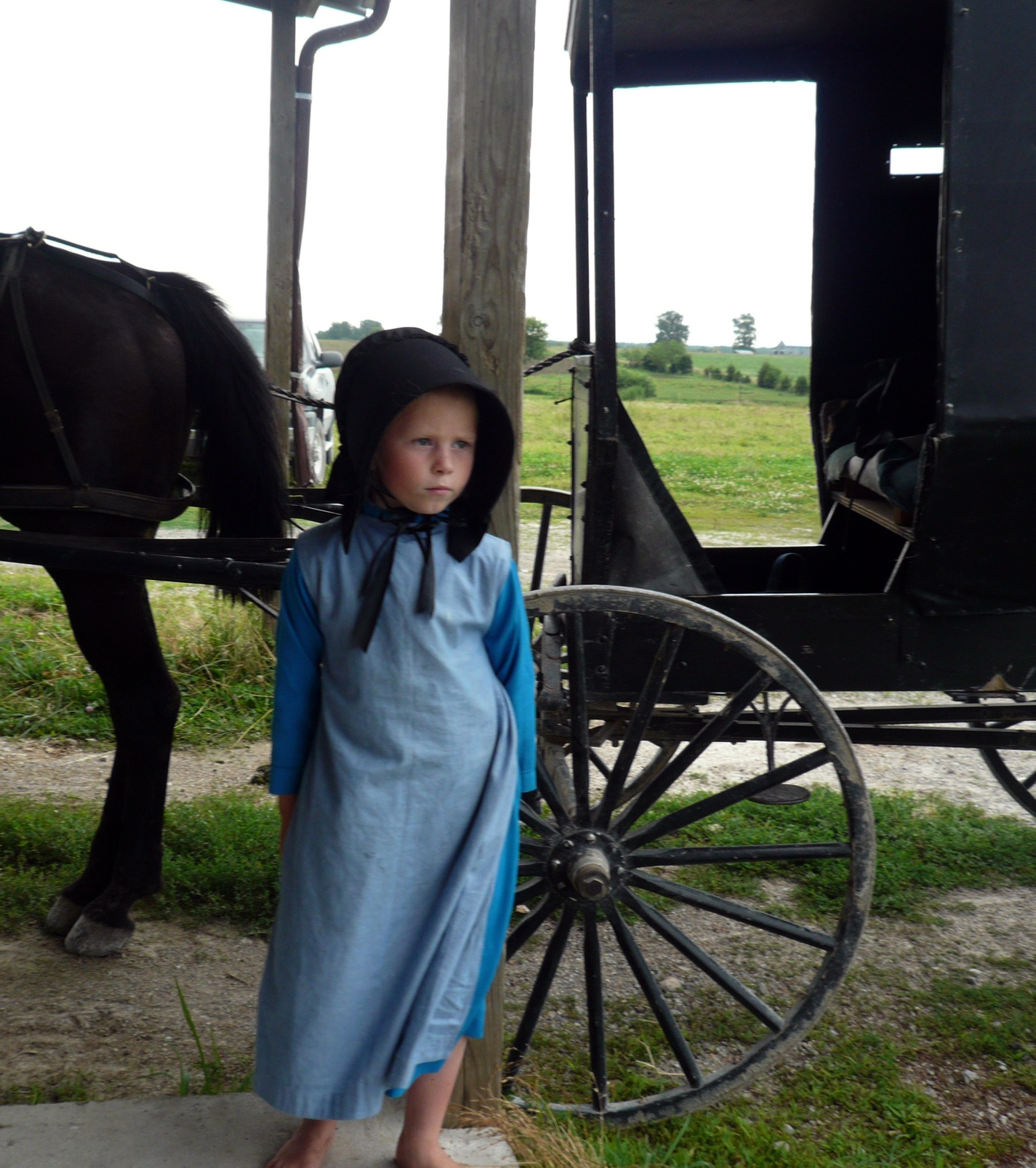 a comparison of the groups of chadism and old order amish What are the differences between the amish and mennonites in both groups share many of old order amish and old order mennonites are those who base their.